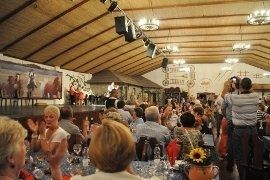 Private Budapest Folklore Show with Dinner